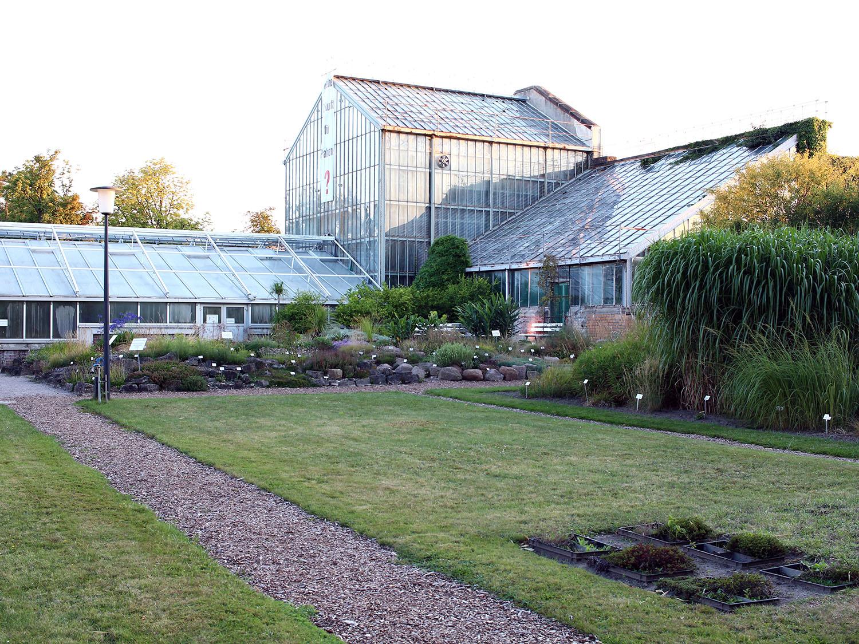 Botanischer Garten Palmenhaus