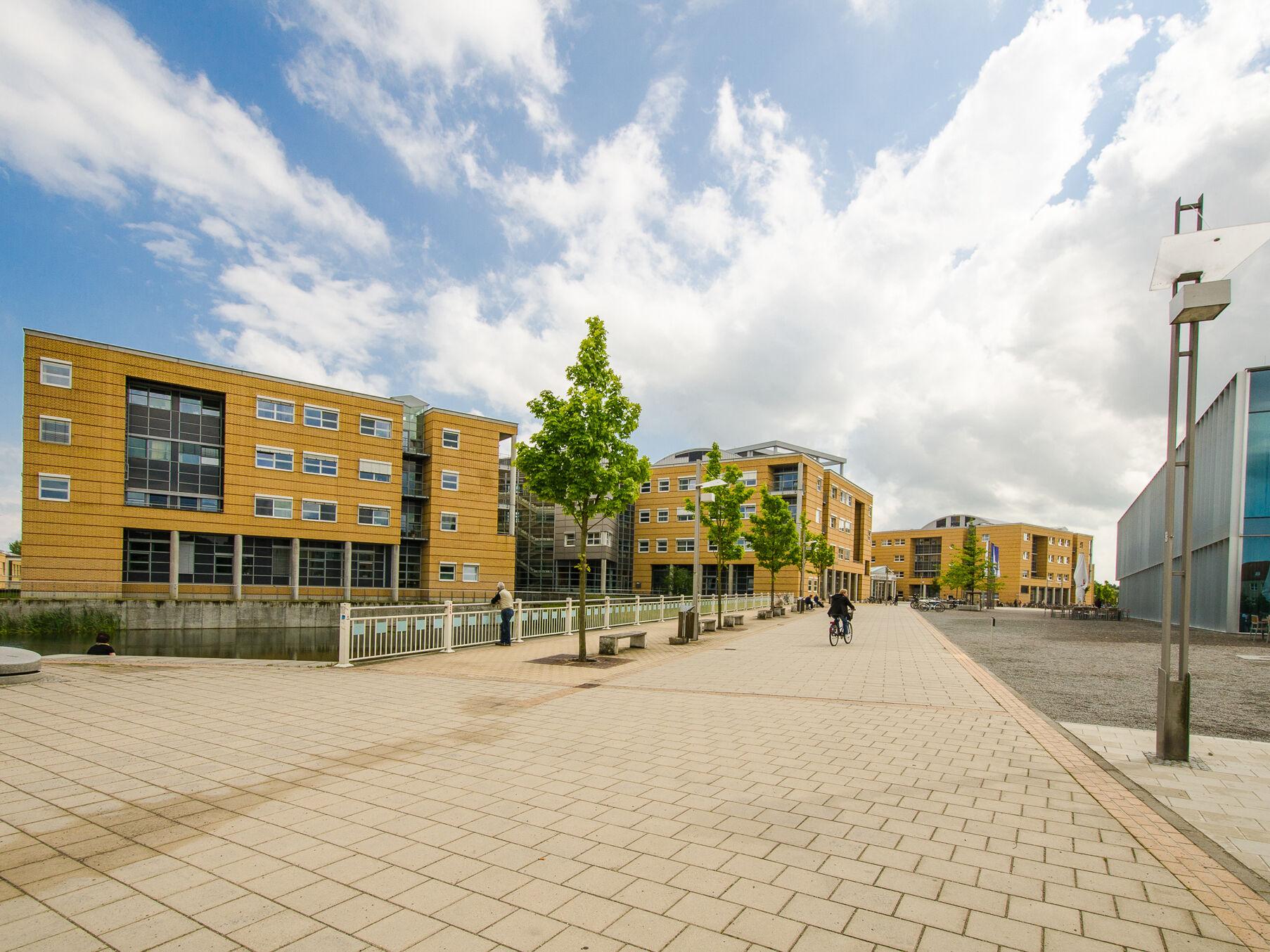 Risikogene für Nierenfunktion anhand von Mega-Studie identifiziert - Universität Greifswald